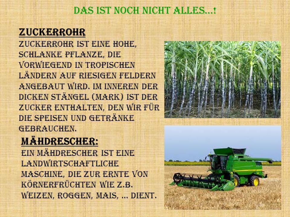 Das ist noch nicht alles…! Mähdrescher: Ein Mähdrescher ist eine landwirtschaftliche Maschine, die zur Ernte von Körnerfrüchten wie z.B. Weizen, Rogge