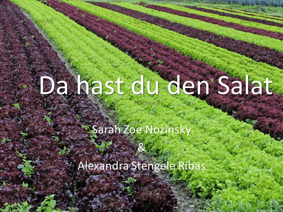 Da hast du den Salat Sarah Zoe Nozinsky & Alexandra Stengele Ribas