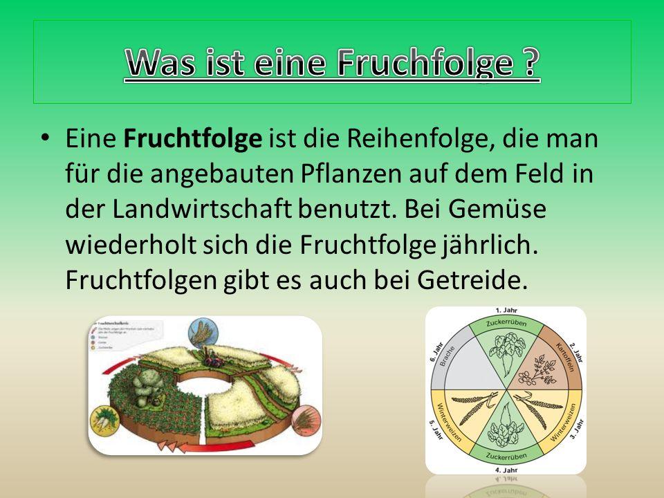 Eine Fruchtfolge ist die Reihenfolge, die man für die angebauten Pflanzen auf dem Feld in der Landwirtschaft benutzt.