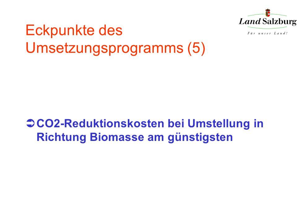 Eckpunkte des Umsetzungsprogramms (5) CO2-Reduktionskosten bei Umstellung in Richtung Biomasse am günstigsten