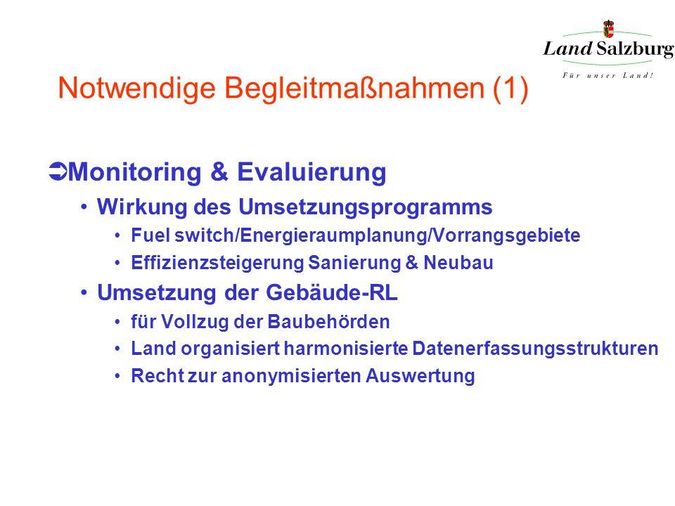 Notwendige Begleitmaßnahmen (1) Monitoring & Evaluierung Wirkung des Umsetzungsprogramms Fuel switch/Energieraumplanung/Vorrangsgebiete Effizienzsteig