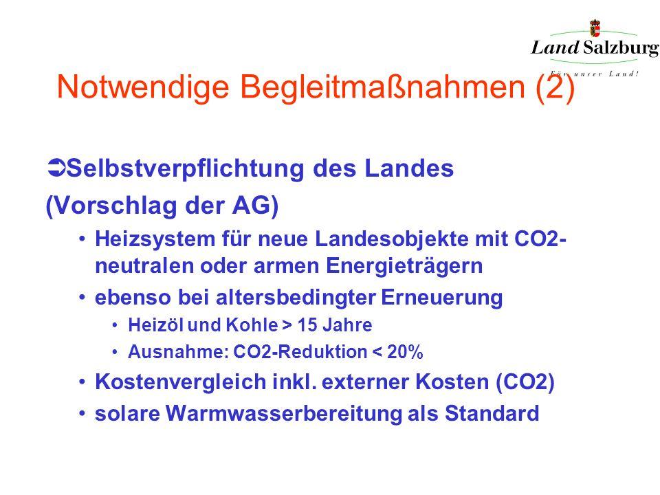 Notwendige Begleitmaßnahmen (2) Selbstverpflichtung des Landes (Vorschlag der AG) Heizsystem für neue Landesobjekte mit CO2- neutralen oder armen Ener