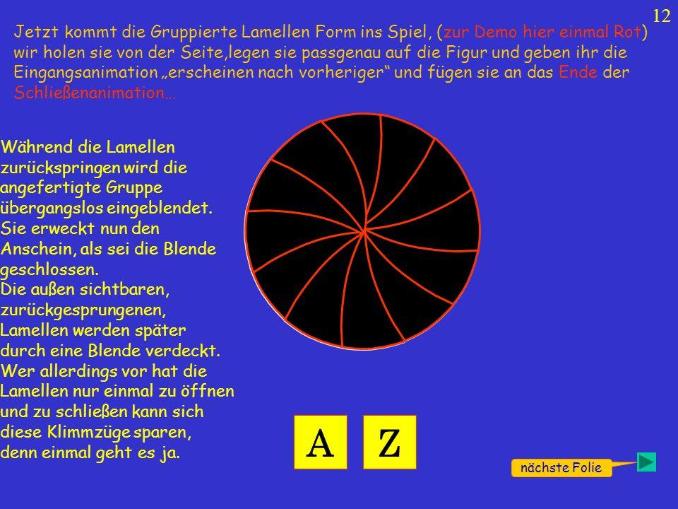 12 nächste Folie AZ Jetzt kommt die Gruppierte Lamellen Form ins Spiel, (zur Demo hier einmal Rot) wir holen sie von der Seite,legen sie passgenau auf