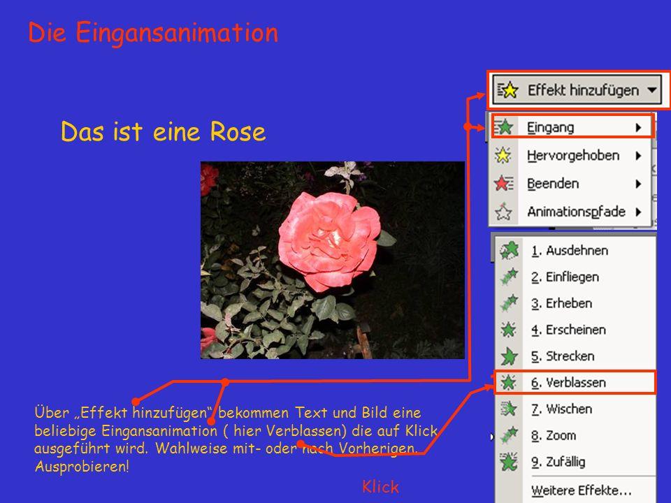 Das ist eine Rose Über Effekt hinzufügen bekommen Text und Bild eine beliebige Eingansanimation ( hier Verblassen) die auf Klick ausgeführt wird.