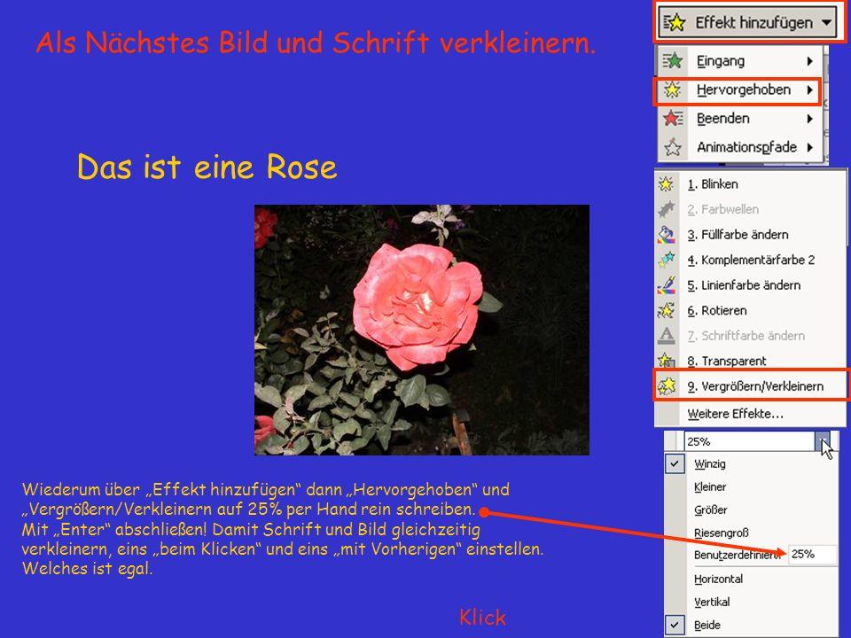 Das ist eine Rose Wiederum über Effekt hinzufügen dann Hervorgehoben und Vergrößern/Verkleinern auf 25% per Hand rein schreiben.