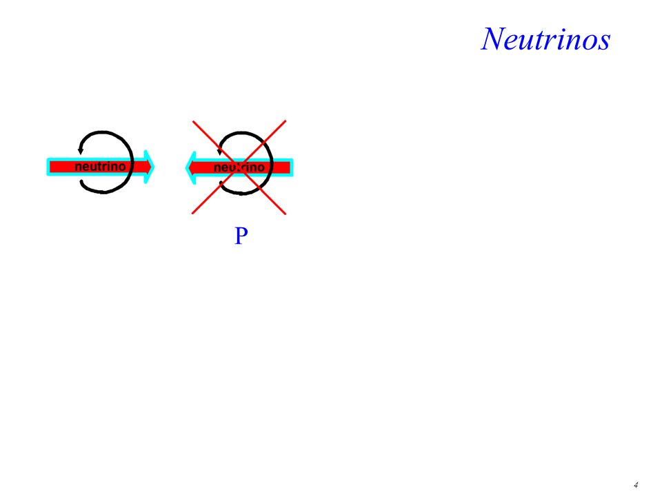 4 Neutrinos P