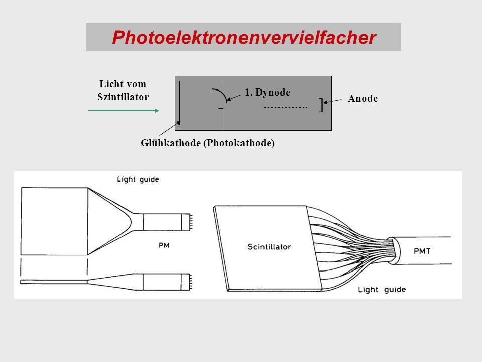 Photoelektronenvervielfacher ] Glühkathode (Photokathode) Licht vom Szintillator 1. Dynode …………. Anode