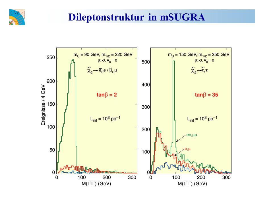 Dileptonstruktur in mSUGRA