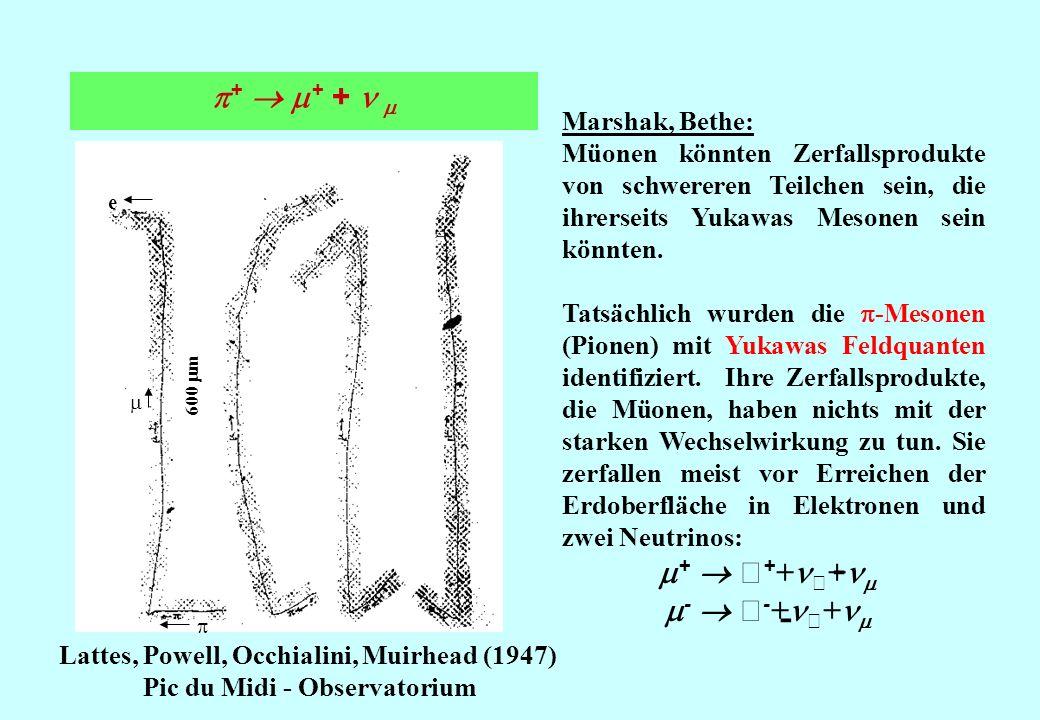 + + + Lattes, Powell, Occhialini, Muirhead (1947) Pic du Midi - Observatorium Marshak, Bethe: Müonen könnten Zerfallsprodukte von schwereren Teilchen sein, die ihrerseits Yukawas Mesonen sein könnten.