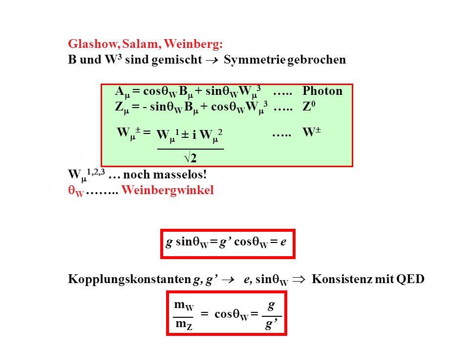 W ± i W 2 __________ Glashow, Salam, Weinberg: B und W 3 sind gemischt Symmetrie gebrochen A = cos W B + sin W W …..Photon Z = - sin W B + cos W W …..Z 0 W = …..W W … noch masselos.