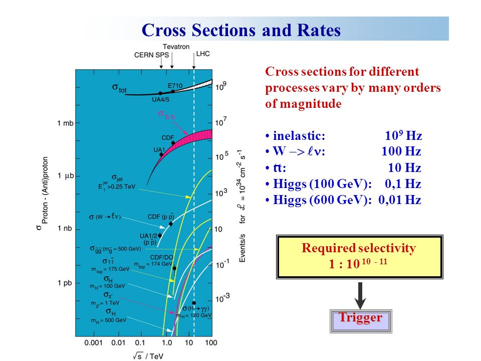 Cross Sections and Rates Cross sections for different processes vary by many orders of magnitude inelastic: 10 9 Hz W : 100 Hz tt: 10 Hz Higgs (100 GeV): 0,1 Hz Higgs (600 GeV): 0,01 Hz Required selectivity 1 : Trigger -