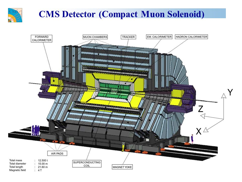 CMS Detector (Compact Muon Solenoid)