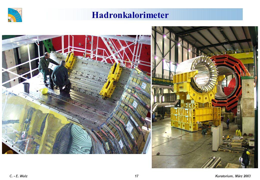 Kuratorium, März 2003 C. - E. Wulz17 Hadronkalorimeter