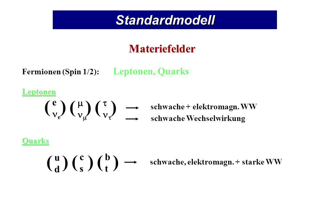 StandardmodellMateriefelder Fermionen (Spin 1/2): Leptonen, QuarksLeptonenQuarks e () () () udud () cscs () btbt () schwache + elektromagn.