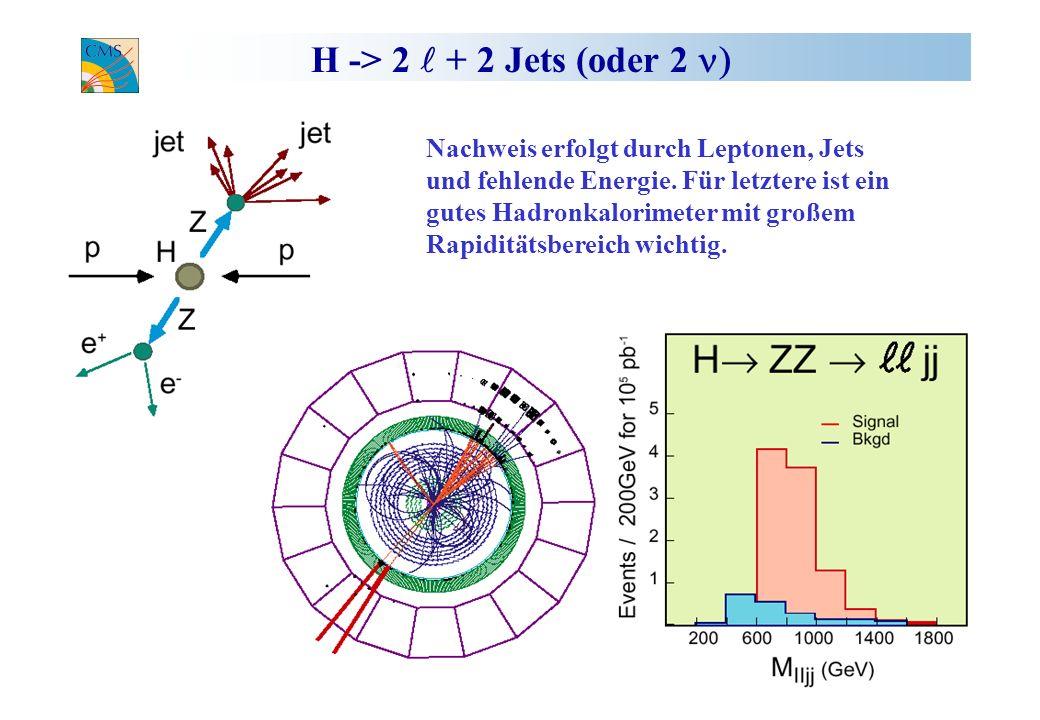 H -> 2 + 2 Jets (oder 2 Nachweis erfolgt durch Leptonen, Jets und fehlende Energie. Für letztere ist ein gutes Hadronkalorimeter mit großem Rapiditäts