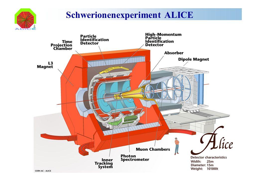 Schwerionenexperiment ALICE