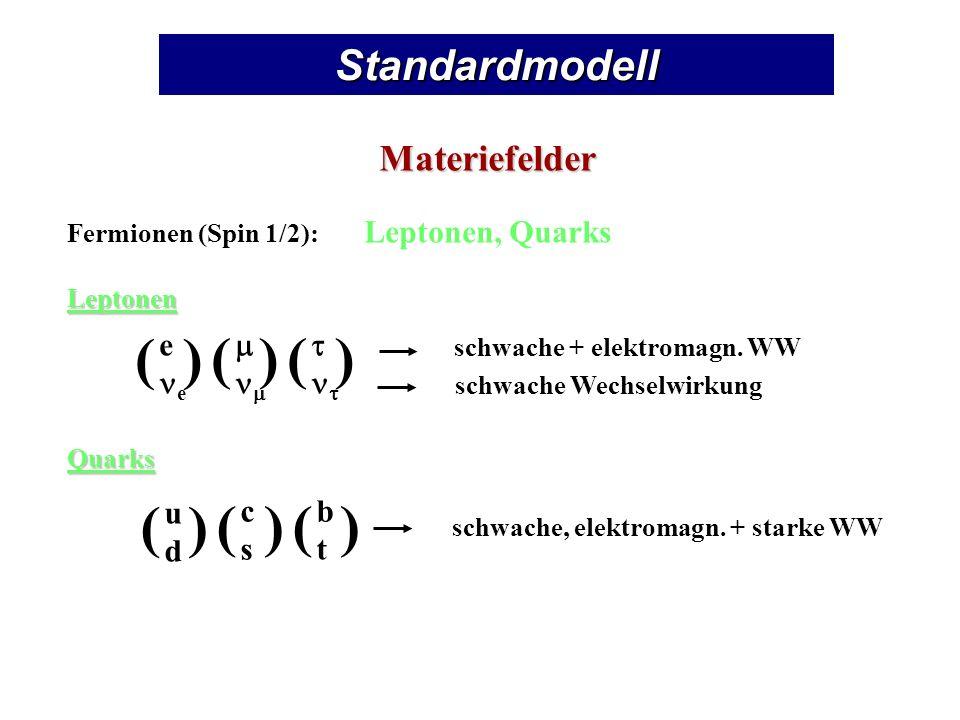 Standardmodell Materiefelder Fermionen (Spin 1/2): Leptonen, QuarksLeptonenQuarks e () () () udud () cscs () btbt () schwache + elektromagn.