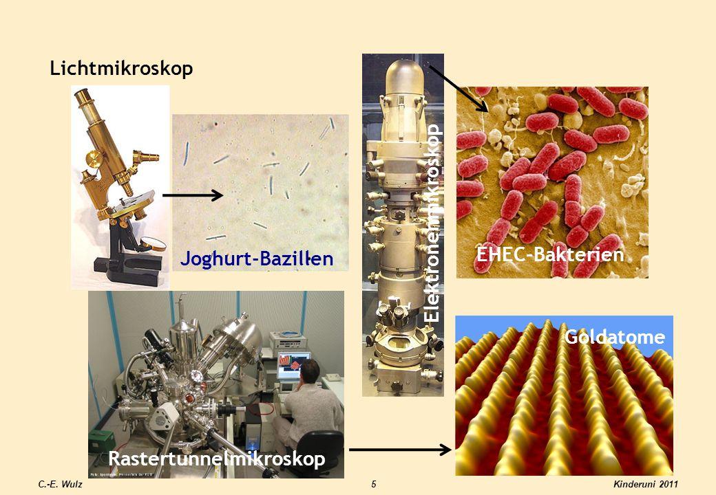 Kinderuni 2011C.-E. Wulz5 Lichtmikroskop Rastertunnelmikroskop Elektronenmikroskop Joghurt-Bazillen EHEC-Bakterien Goldatome