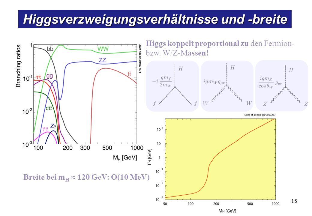 18 Higgsverzweigungsverhältnisse und -breite Higgs koppelt proportional zu den Fermion- bzw. W/Z-Massen! Breite bei m H 120 GeV: O(10 MeV)