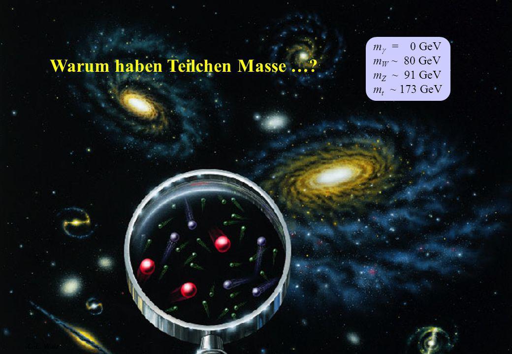 Warum haben Teilchen Masse …? m = 0 GeV m W ~ 80 GeV m Z ~ 91 GeV m t ~ 173 GeV C.-E. Wulz4