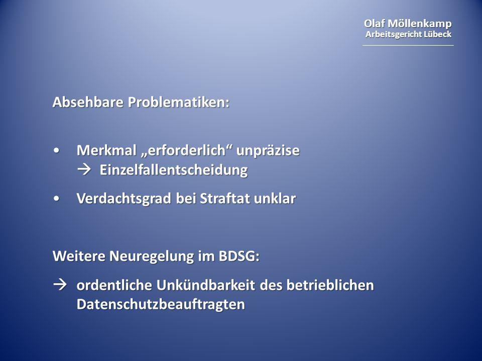 Olaf Möllenkamp Arbeitsgericht Lübeck II.Individualarbeitsrecht 3.