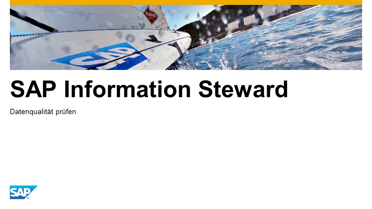 SAP Information Steward Datenqualität prüfen