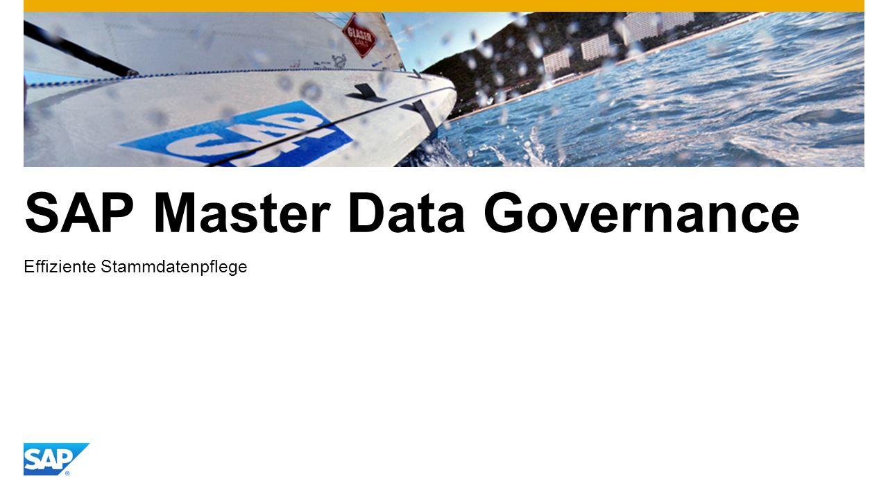 SAP Master Data Governance Effiziente Stammdatenpflege