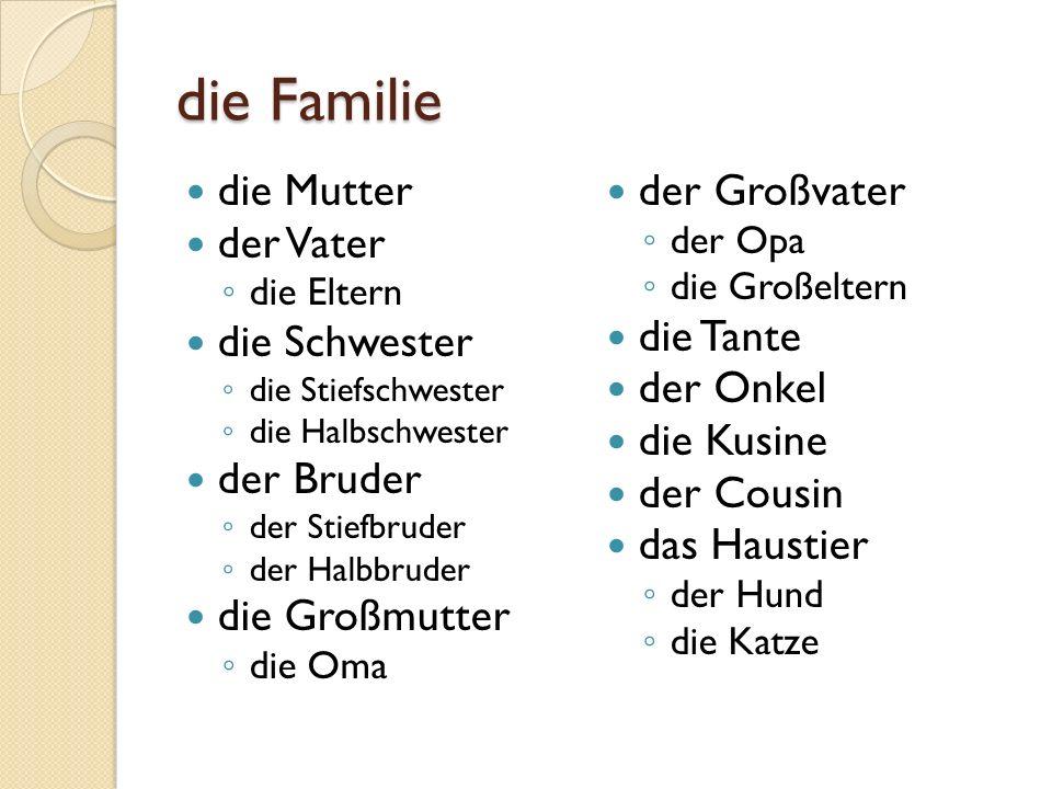 die Familie die Mutter der Vater die Eltern die Schwester die Stiefschwester die Halbschwester der Bruder der Stiefbruder der Halbbruder die Großmutte