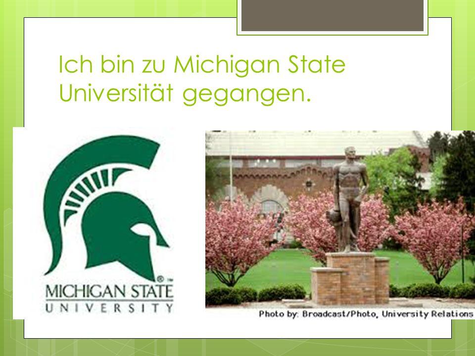 Ich bin zu Michigan State Universität gegangen.