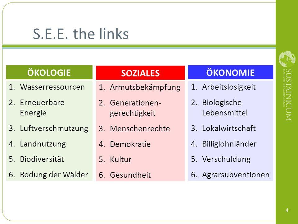S.E.E. the links 4 ÖKOLOGIE 1.Wasserressourcen 2.Erneuerbare Energie 3.Luftverschmutzung 4.Landnutzung 5.Biodiversität 6.Rodung der Wälder SOZIALES 1.