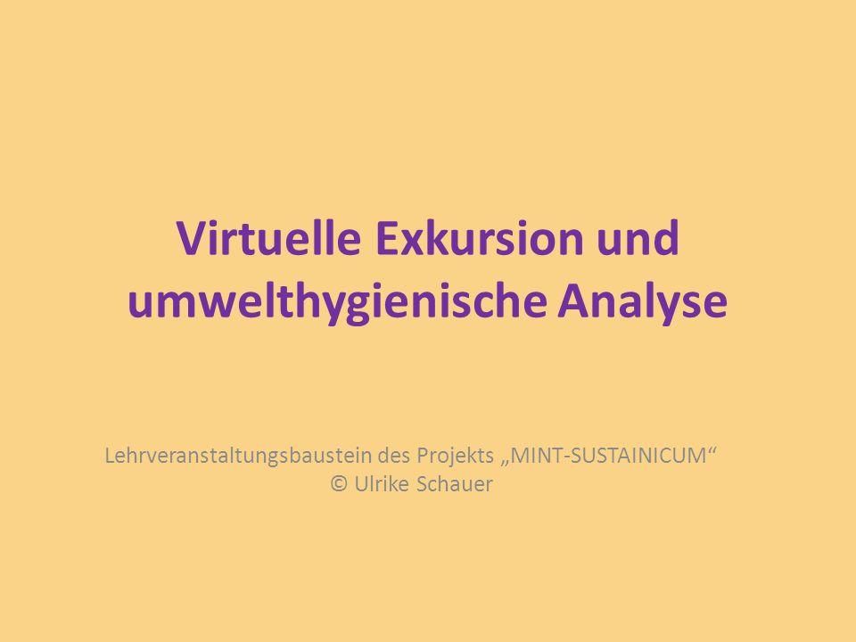 Virtuelle Exkursion und umwelthygienische Analyse Lehrveranstaltungsbaustein des Projekts MINT-SUSTAINICUM © Ulrike Schauer