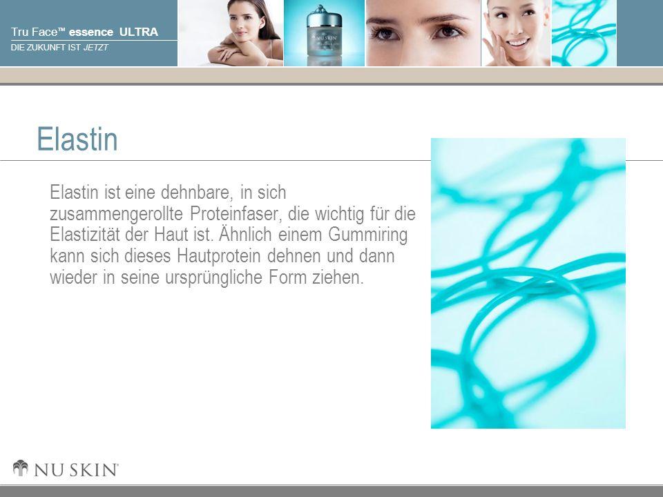 © 2001 Nu Skin International, Inc Tru Face essence ULTRA DIE ZUKUNFT IST JETZT Elastin Elastin ist eine dehnbare, in sich zusammengerollte Proteinfase