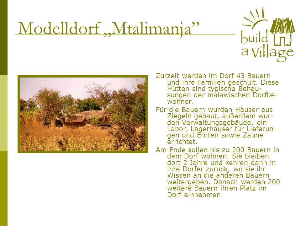 Zurzeit werden im Dorf 43 Bauern und ihre Familien geschult. Diese Hütten sind typische Behau- sungen der malawischen Dorfbe- wohner. Für die Bauern w