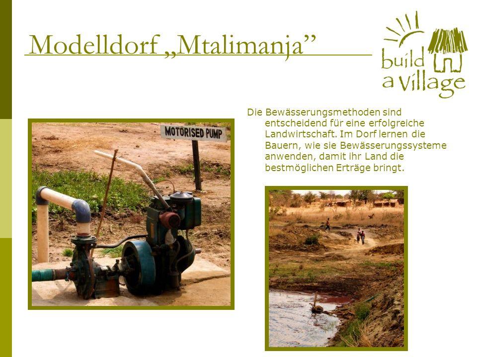 Die Bewässerungsmethoden sind entscheidend für eine erfolgreiche Landwirtschaft. Im Dorf lernen die Bauern, wie sie Bewässerungssysteme anwenden, dami