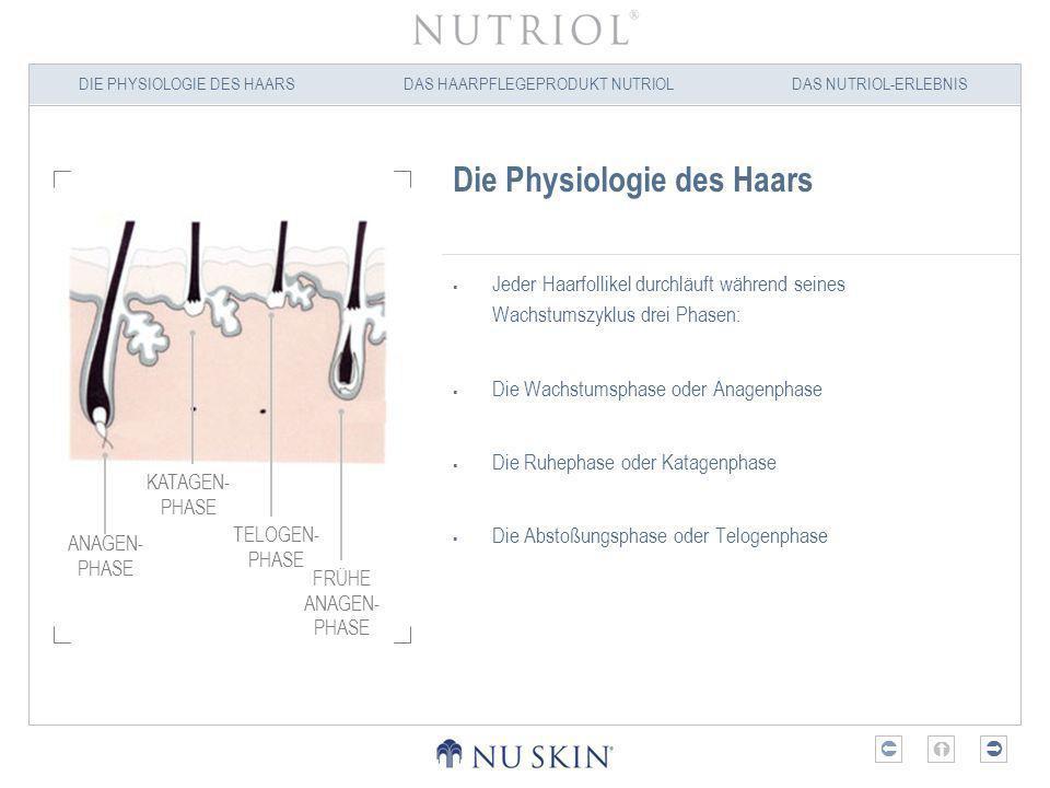DIE PHYSIOLOGIE DES HAARSDAS HAARPFLEGEPRODUKT NUTRIOLDAS NUTRIOL-ERLEBNIS Ursachen für Veränderungen der Haarstruktur und des Haarvolumens Lebensweise Stress, Medikamente und Hormone beeinflussen nachweislich die Vitalität des Haars.