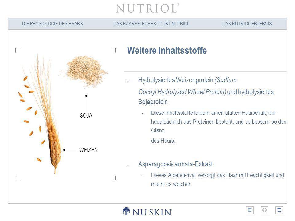 DIE PHYSIOLOGIE DES HAARSDAS HAARPFLEGEPRODUKT NUTRIOLDAS NUTRIOL-ERLEBNIS Nutriol – Produkteigenschaften Revitalisiert und kräftigt das Haar Die Haarstärke hängt vom Feuchtigkeits- und Nährstoffgehalt des Haarschafts ab.