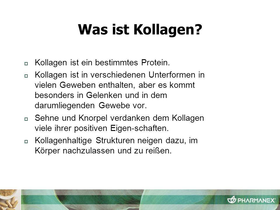 Was ist Kollagen? Kollagen ist ein bestimmtes Protein. Kollagen ist in verschiedenen Unterformen in vielen Geweben enthalten, aber es kommt besonders