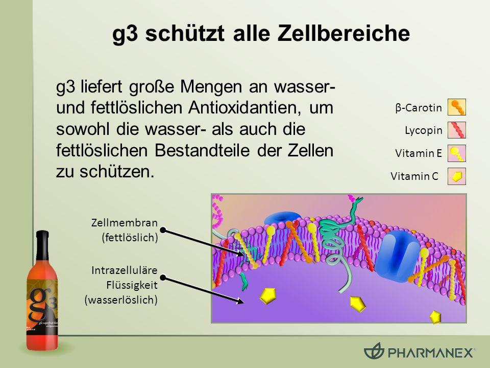 Zellmembran (fettlöslich) Intrazelluläre Flüssigkeit (wasserlöslich) Vitamin C Vitamin E β-Carotin Lycopin g3 liefert große Mengen an wasser- und fett