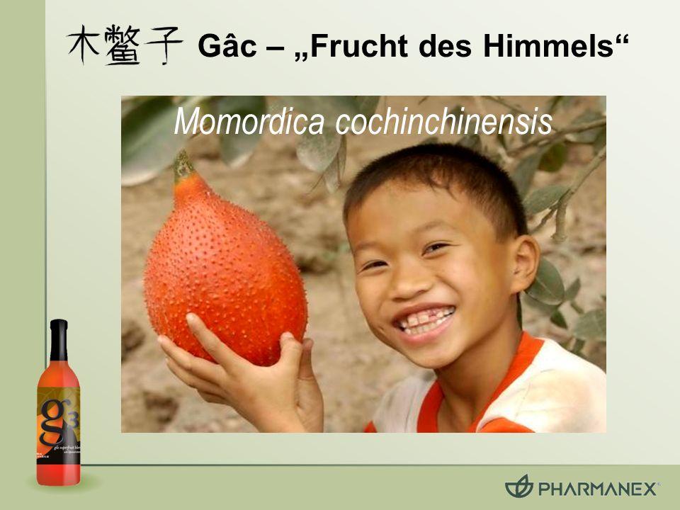 Wissenschaftliches Gutachten Current Topics in Nutraceutical Research, November 2005 Behandelt die Eigenschaften der Superfrüchte in g3