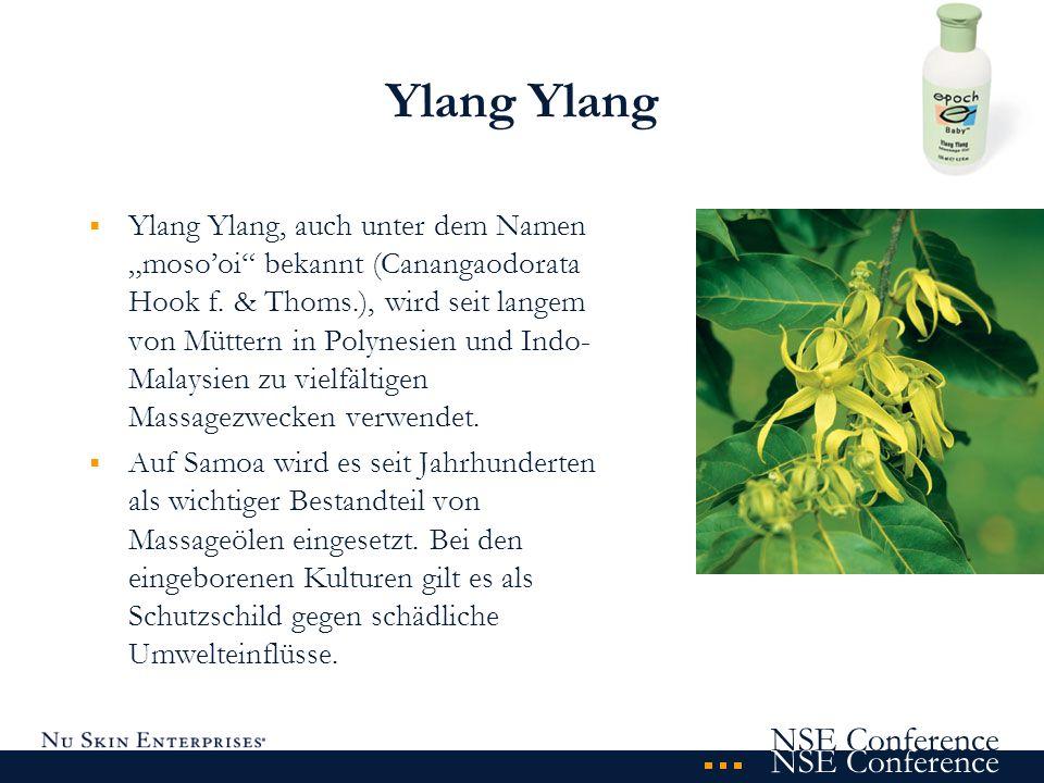 NSE Conference Ylang Ylang Ylang, auch unter dem Namen mosooi bekannt (Canangaodorata Hook f. & Thoms.), wird seit langem von Müttern in Polynesien un