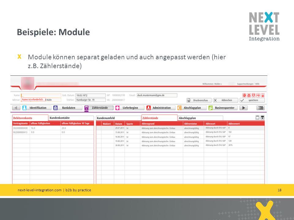 18 Module können separat geladen und auch angepasst werden (hier z.B. Zählerstände) Beispiele: Module next-level-integration.com   b2b by practice