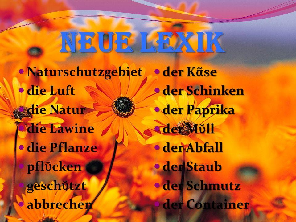 Neue Lexik Neue Lexik Naturschutzgebiet die Luft die Natur die Lawine die Pflanze pfl cken gesch tzt abbrechen der K se der K se der Schinken der Schinken der Paprika der Paprika der M ll der M ll der Abfall der Abfall der Staub der Staub der Schmutz der Schmutz der Container der Container