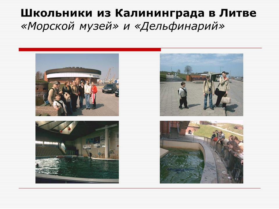 Школьники из Калининграда в Литве «Морской музей» и «Дельфинарий»
