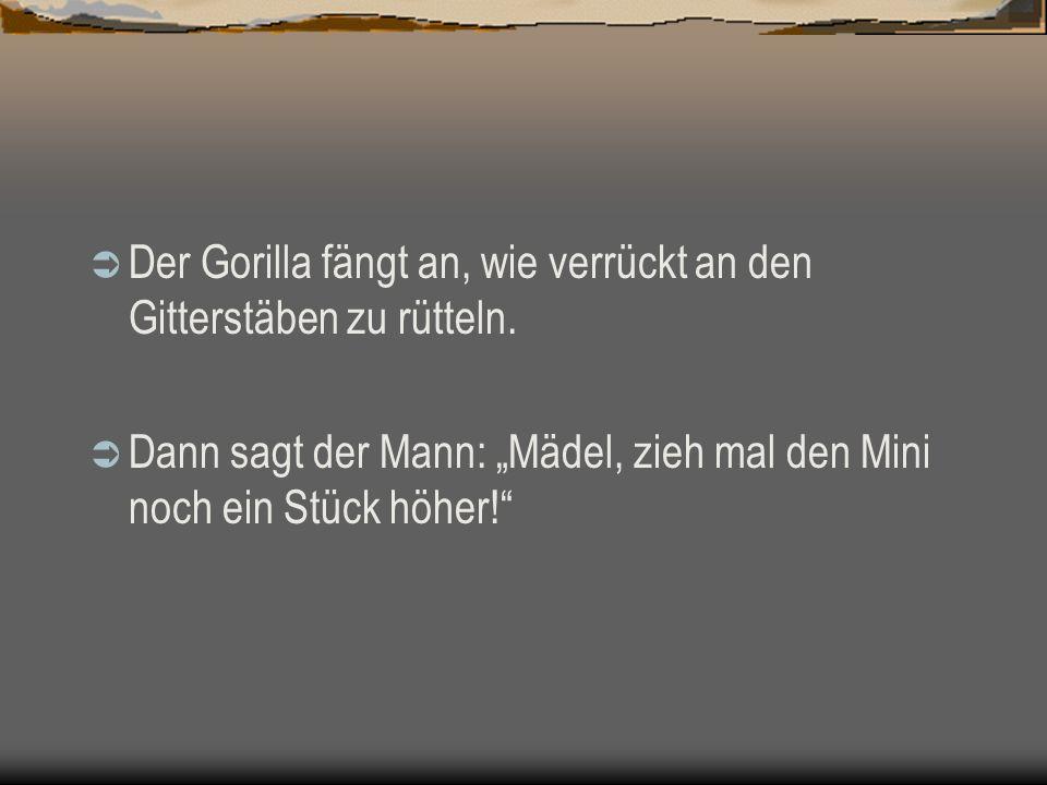 Der Gorilla fängt an, wie verrückt an den Gitterstäben zu rütteln. Dann sagt der Mann: Mädel, zieh mal den Mini noch ein Stück höher!