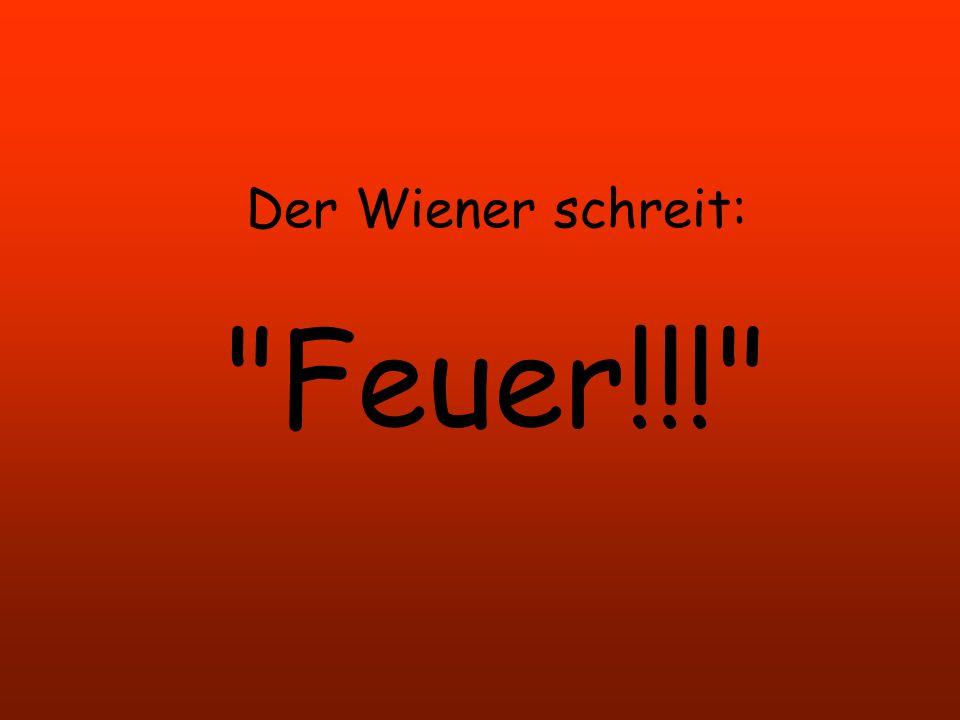 Der Wiener wird zu Exekution freigegeben. Der Kommandeur ruft: Gewehre anlegen!