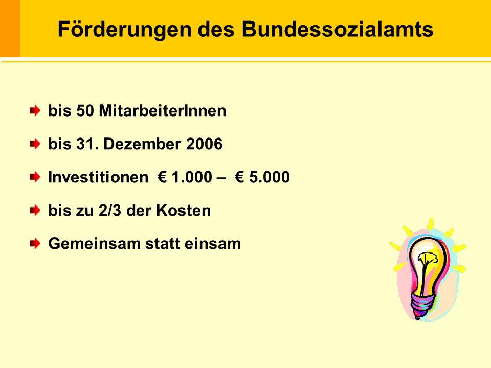 Die Behindertengleichstellung … Förderungen des Bundessozialamts bis 50 MitarbeiterInnen bis 31. Dezember 2006 Investitionen 1.000 – 5.000 bis zu 2/3