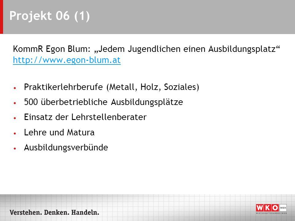Projekt 06 (1) KommR Egon Blum: Jedem Jugendlichen einen Ausbildungsplatz http://www.egon-blum.at Praktikerlehrberufe (Metall, Holz, Soziales) 500 übe