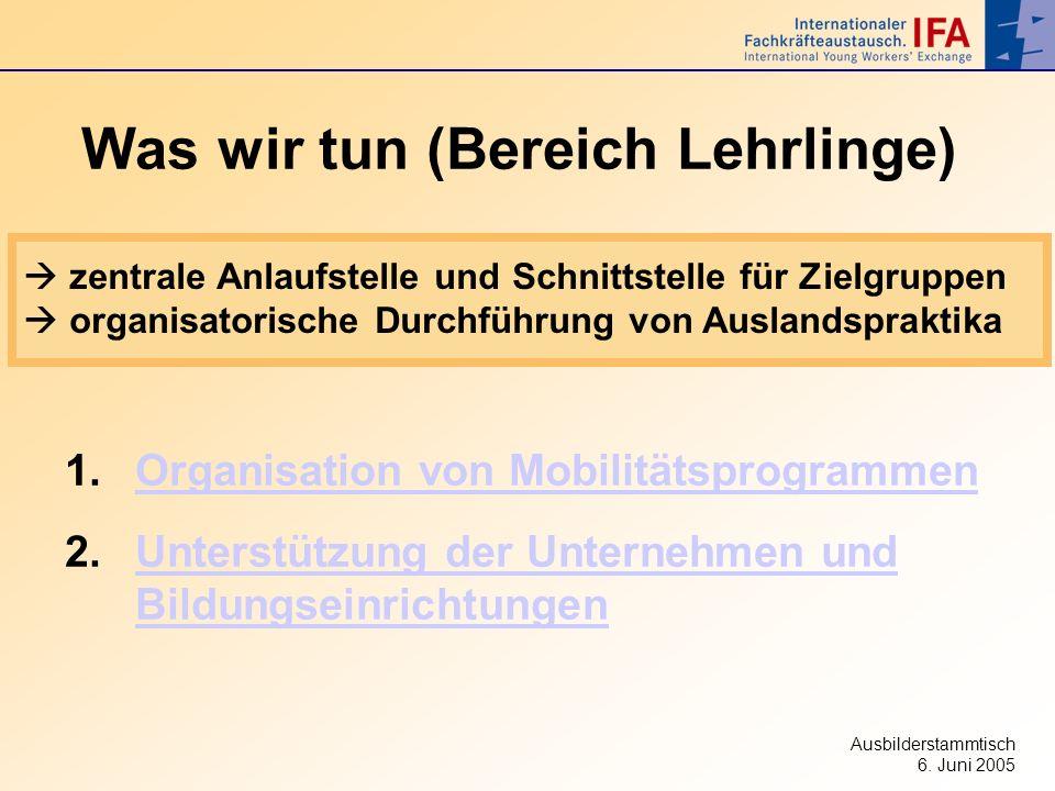 Ausbilderstammtisch 6. Juni 2005 Was wir tun (Bereich Lehrlinge) 1.Organisation von MobilitätsprogrammenOrganisation von Mobilitätsprogrammen 2.Unters