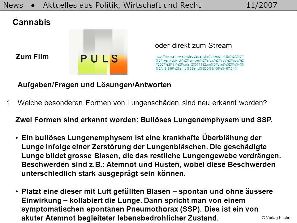 News Aktuelles aus Politik, Wirtschaft und Recht11/2007 © Verlag Fuchs Cannabis 1.Welche besonderen Formen von Lungenschäden sind neu erkannt worden?