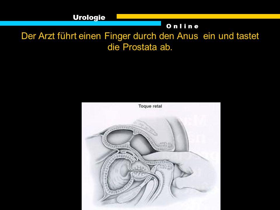 Die Untersuchung der Prostata ist ein notwendiges Übel bei Männern ab 45. Die Untersuchung schützt vor Folgen. Urologie O n l i n e